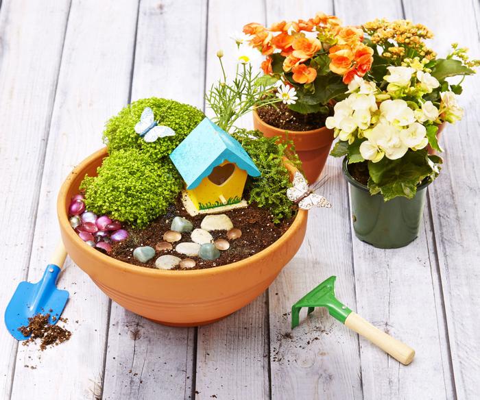 une activité manuelle facile et rapide pour les petits jardiniers, comment fabriquer un mini-jardin de fée