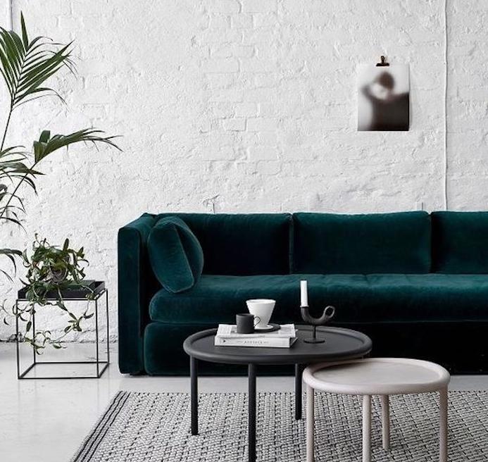 idée de canapé bleu pétrole, mur en briques blanches, style industriel, tapis gris, table noire et bois, table de nuit noire, plante verte