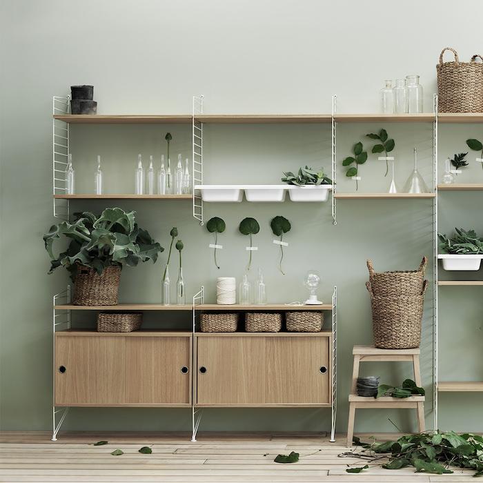 mur couler vert céladon avec une meuble rangement plantes avec plusieurs étagères, déco de plantes et feuilles vertes, parquet clair