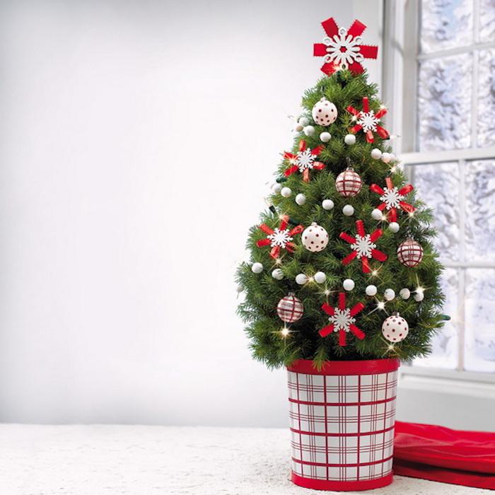 petit sapin de noel décoré de guirlande de petites boules de noel, boules et flacons de neige rouges et blancs, guirlande lumineuse