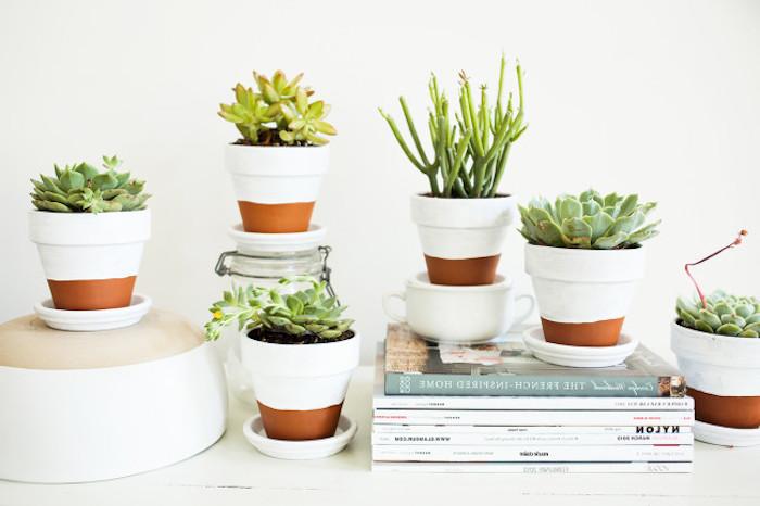 des pots de fleurs, décorés de peinture blanche, succulents diy déco chambre avec plantes, ambiance scandinave