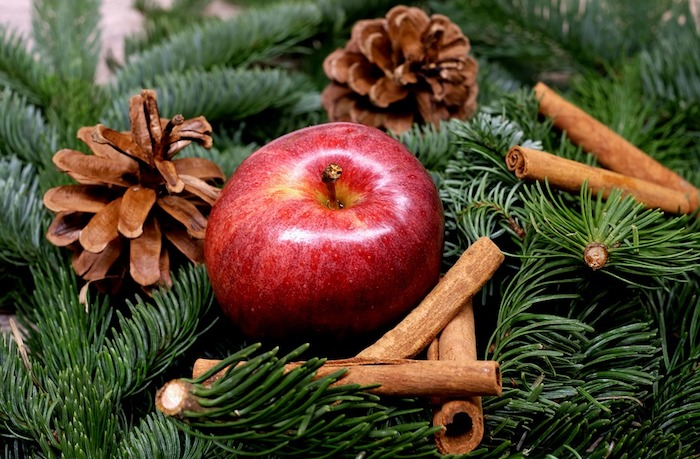 exemple de fond d écran de noel en branches de pin vertes, pommes de pin et pommes rouges et cannelle
