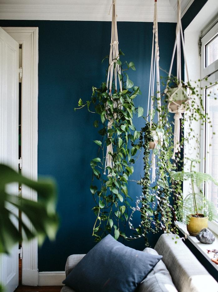 deco bleu canard, nuance pétrole foncée, pots de plantes suspendues, canapé gris, paré de coussins bleu marine