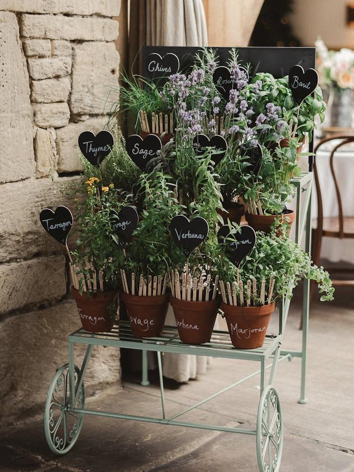 plan de table mariage champêtre en pots d herbes aromatiques, noms invités écrits sur des batonnets de glace