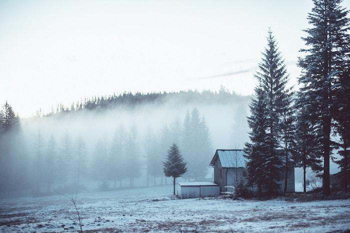 fond ecran paysage hiver, forêt, montagne enveloppé de brouillard, neige sur le sol, petite cabane dans les bois