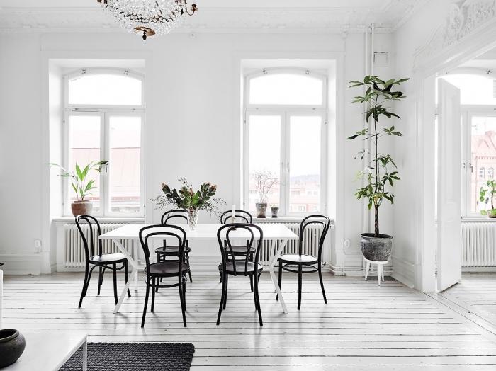 design scandinave, peinture murale en blanche avec plancher en bois, plantes vertes dans pot à fleur céramique