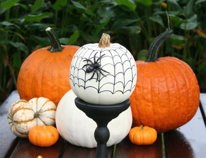 citrouille halloween, décoration halloween pour le jardin avec citrouilles blanches et oranges