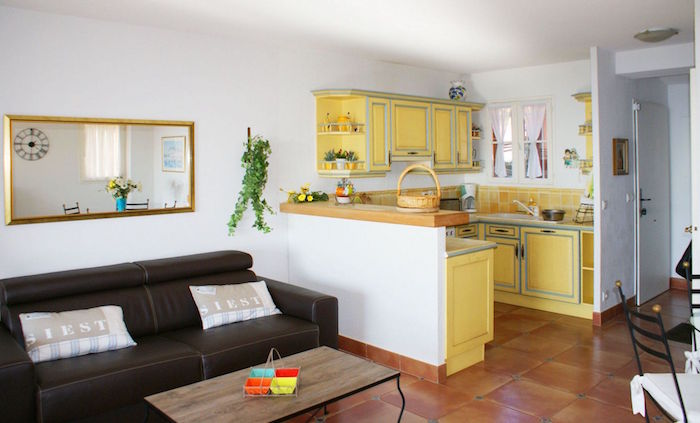modele petite cuisine à l'américaine appartement