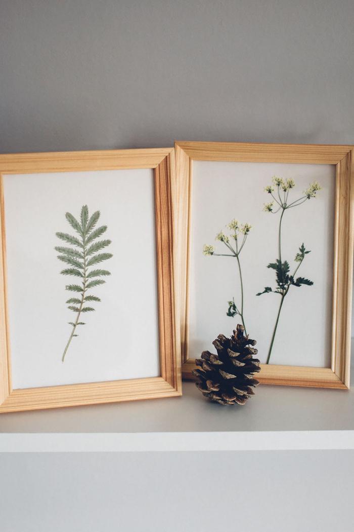 réaliser un herbier vintage à l'aide des livres lourds, idée pour une déco inspirée des collections botaniques vintage