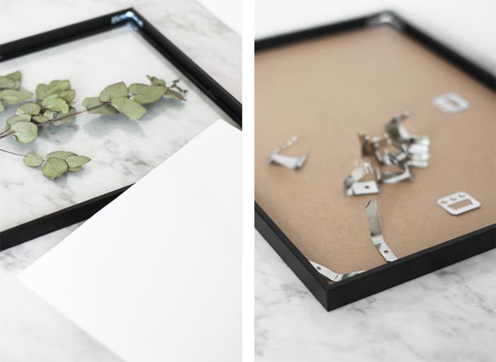 projet facile et rapide pour un cadre vegetal d'herbier encadré pour une inspiration botanique dans la déco d'intérieur