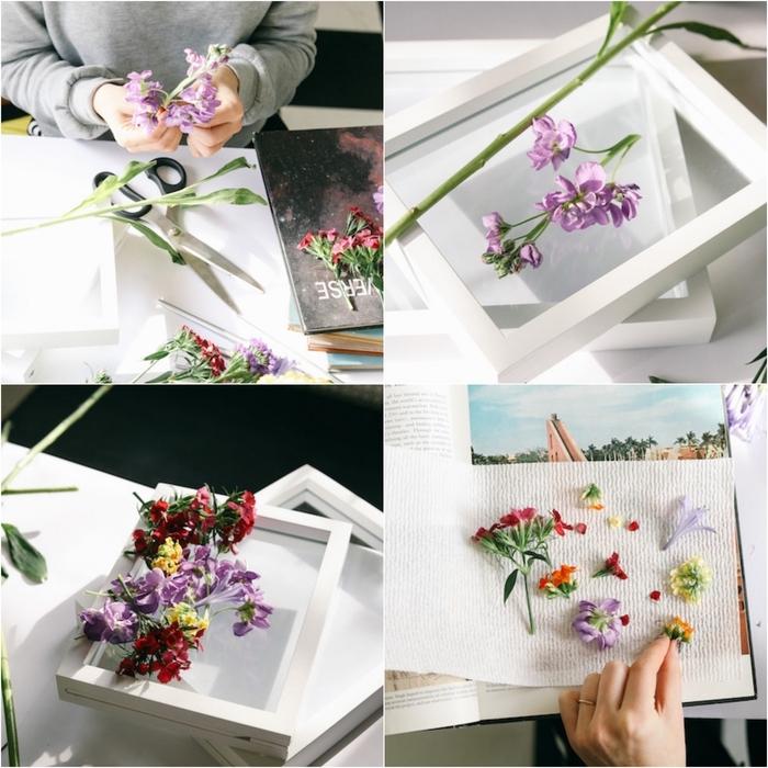 tuto cadre vegetal à herbier flottant de jolies fleurs encadrées