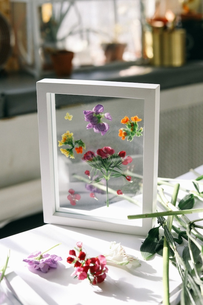 idée pour un cadre vegetal flottant réalisé avec de jolies fleurs séchées pour une touche déco nature dans l'intérieur