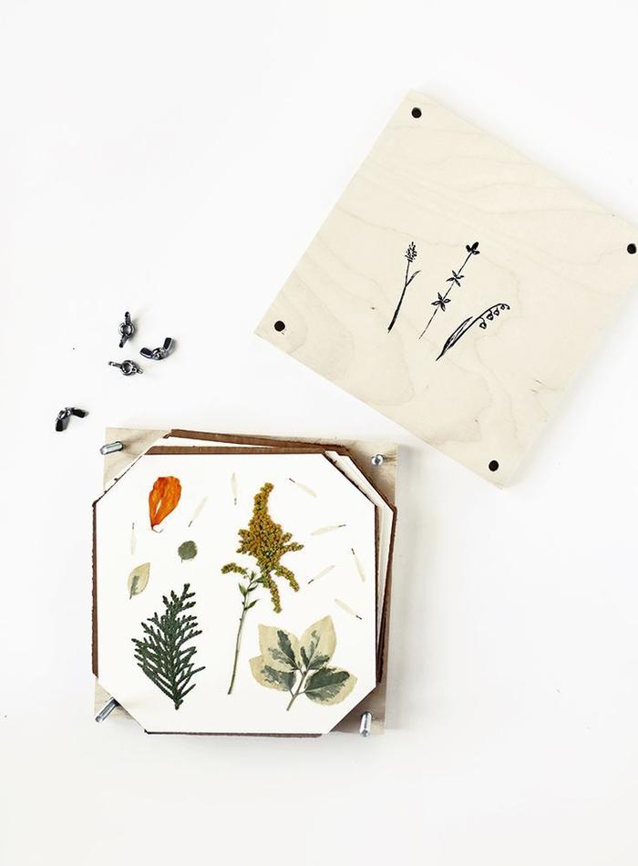 fabriquez un herbier et en réalisez de jolis projets diy avec une presse à fleurs vintage faite maison