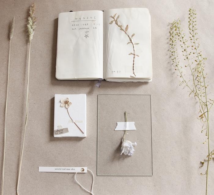 bricolage sur thème nature pour faire un herbier vintage inspirée des études botaniques