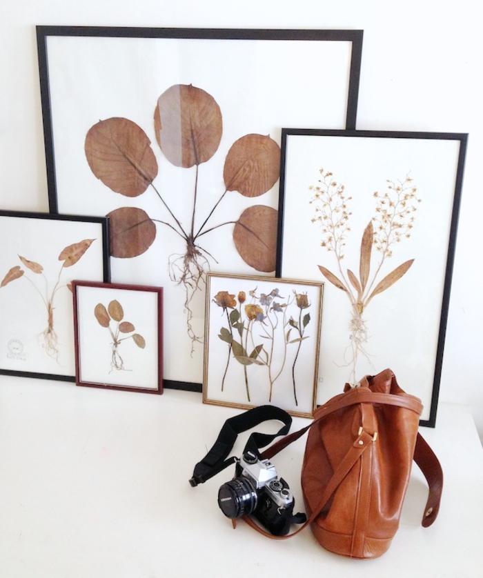 comment réaliser un cadre deco original et vintage à inspiration botanique avec quelques feuilles et fleurs séchées, décoration murale originale avec des plantes pressées encadrées
