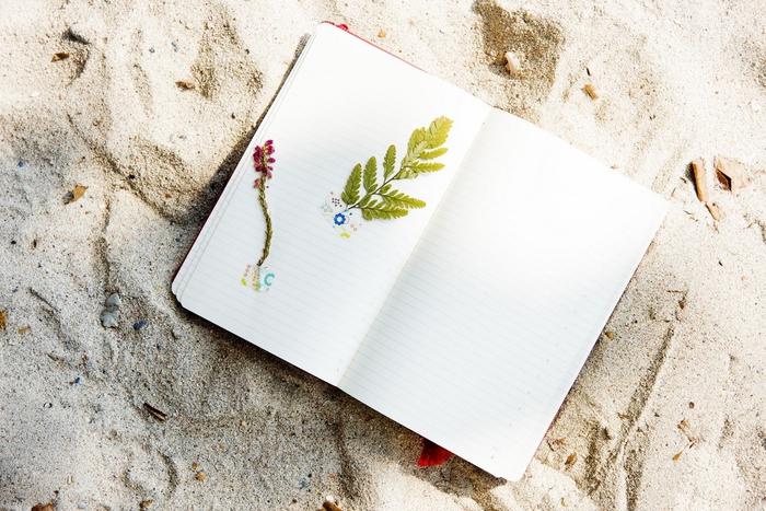 comment fabriquer un herbier pour décorer un carnet de voyage, un simple cahier ou un carnet d'art pour un design original à inspiration nature