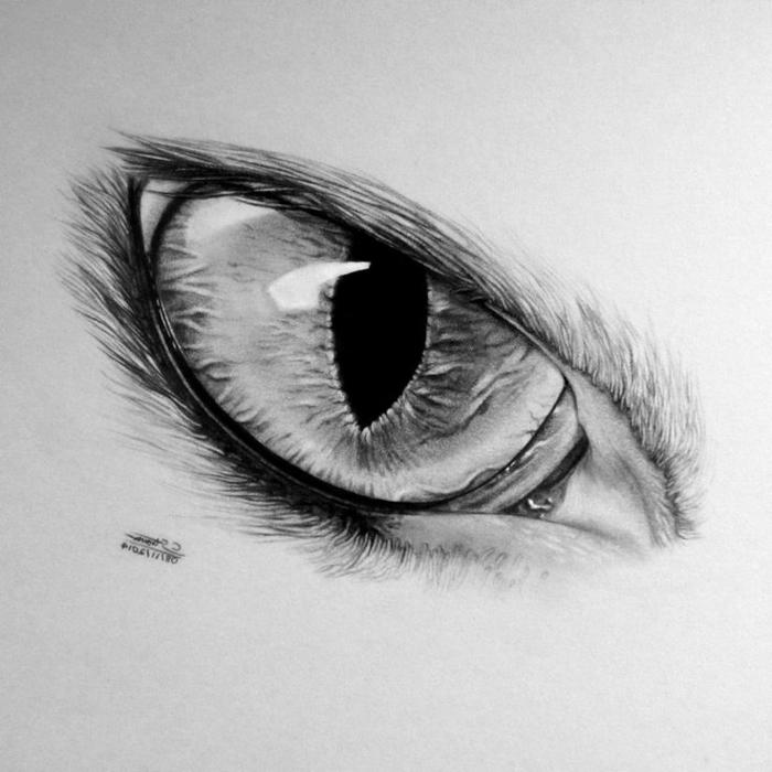 Fantastique dessin noir et blanc facile dessin en noir et blanc cool comment dessiner oeil animal