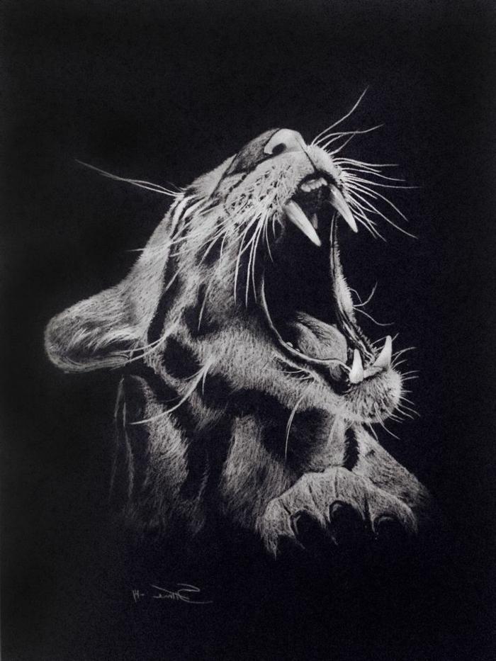 Dessin de lion en noir et blanc dessin noir et blanc technique dessin papier noir
