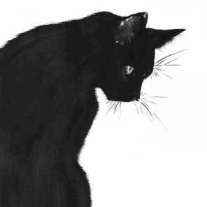 Le dessin noir et blanc - quelques conseils pour les débutants et beaucoup d'exemples