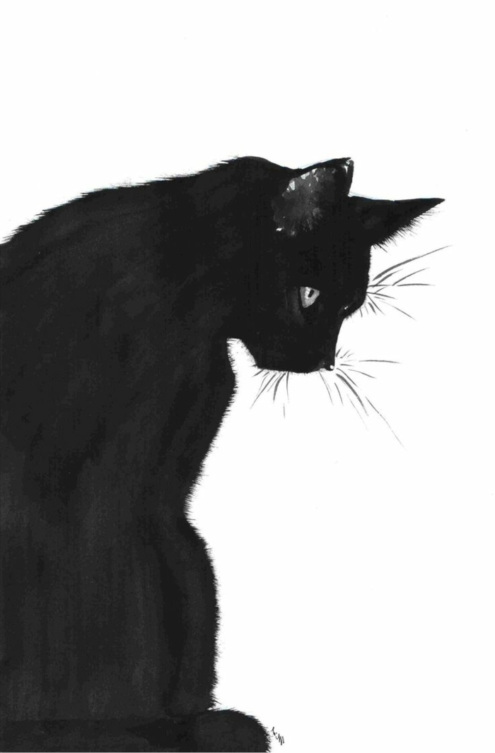 Dessins chats noirs - Chat noir dessin ...