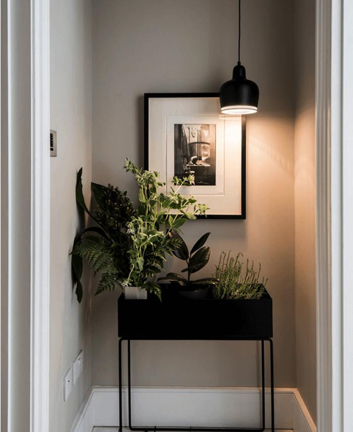 deco couloir, peinture couleur ficelle, jardinière noire avec des plantes vertes dedans, suspension noire, deco murale en noir et blanc