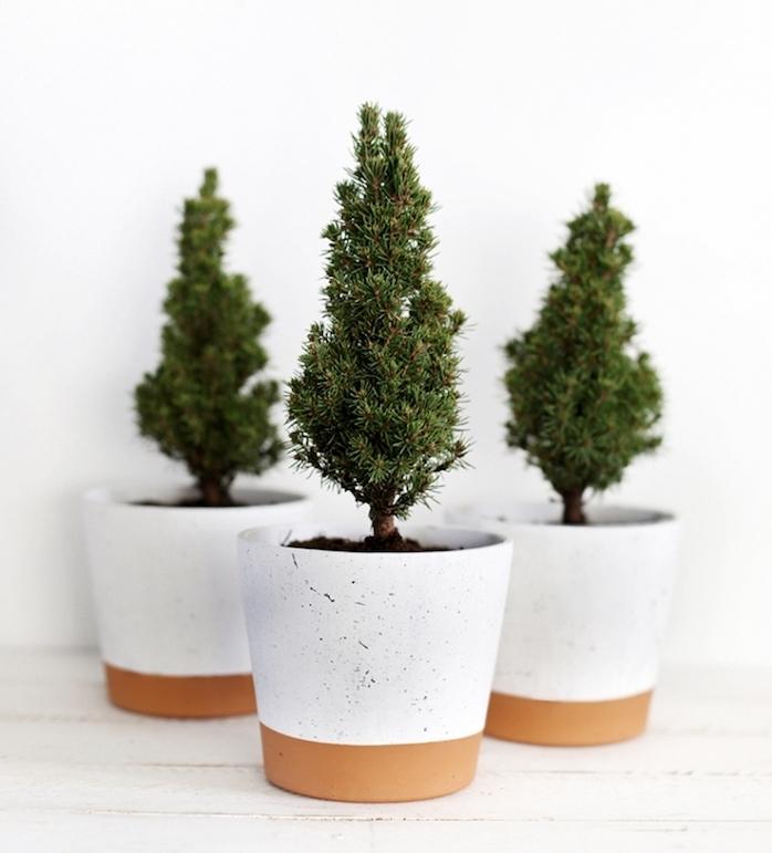 idée cadeau maman pour noel, de petits sapins miniatures dans un pot de fleur blanc et marron