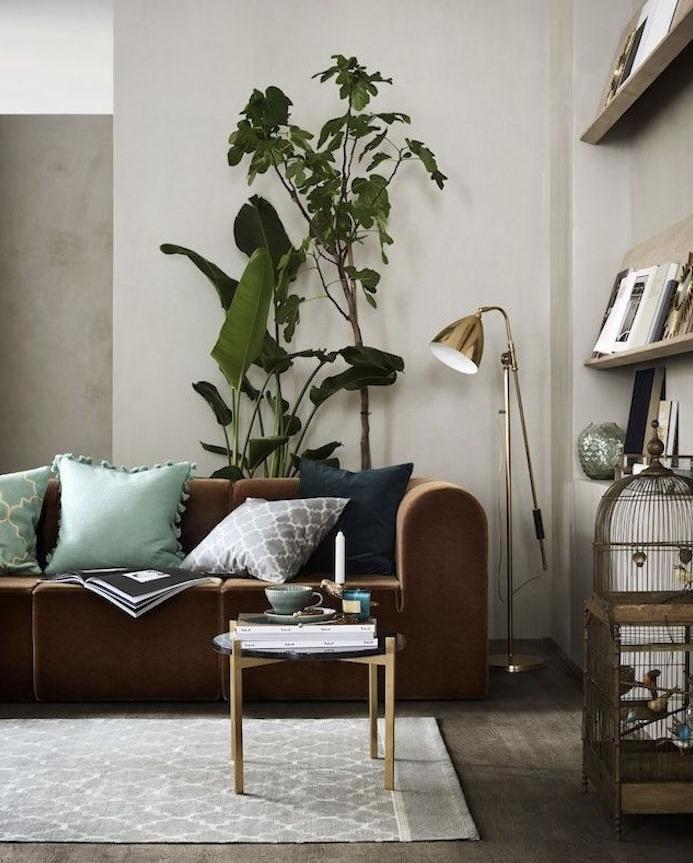 deco salon avec murs couleur grege, canapé marron, coussins gris, bleu et vert, tapis gris, parquet marron, cage oiseau, etageres ouvertes