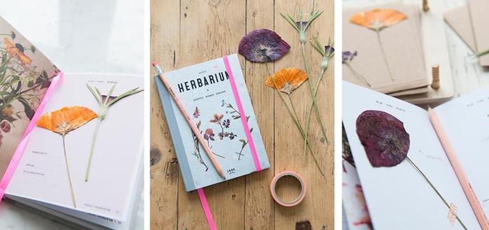 idée originale pour faire un herbier de poche original avec des dessins à motifs végétaux et collage de fleurs séchées