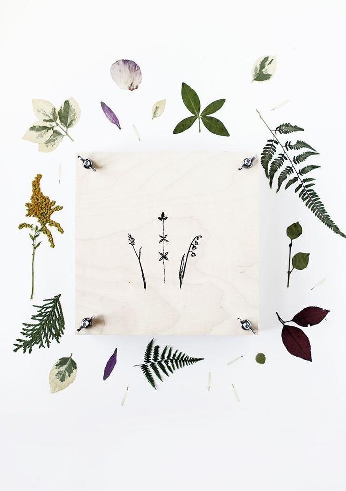 presse à fleurs vintage diy en bois de contreplaqué à motif végétal dessiné pour fabriquer un herbier