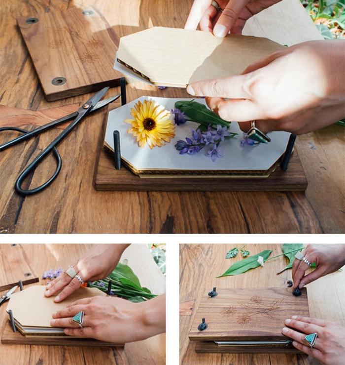 technique de pressage des fleurs avec une presse-fleurs diy vintage pour réaliser un herbier