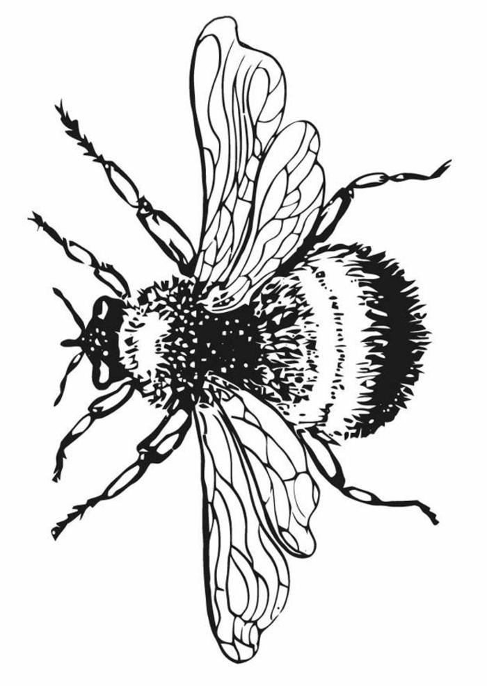 Peinture dessin noir et blanc a imprimer exemple en photo de dessin bug
