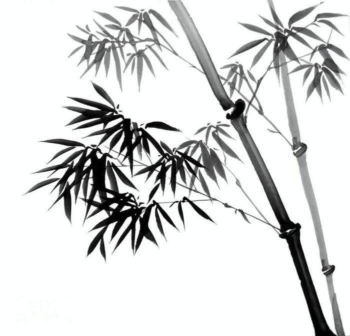 Image de dessin cheval noir et blanc dessin fantastique noir et blanc plantes asiatique dessin