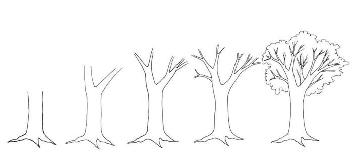 Apprendre le dessin pas a pas dessin de feuille d arbre, comment dessiner une branche d'arbre
