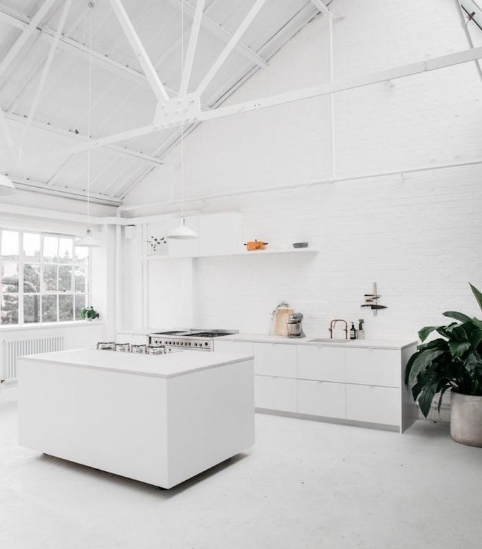 cuisine moderne blanche avec comptoir blanc et armature apparente, grosse plante verte, etagere ouverte