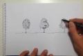 Comment dessiner un arbre – conseils et images à vous aider réaliser un joli dessin