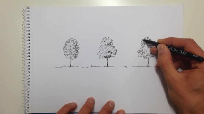 Arbre a dessiner beau dessin facil à réaliser dessin arbre chane evolution de dessin