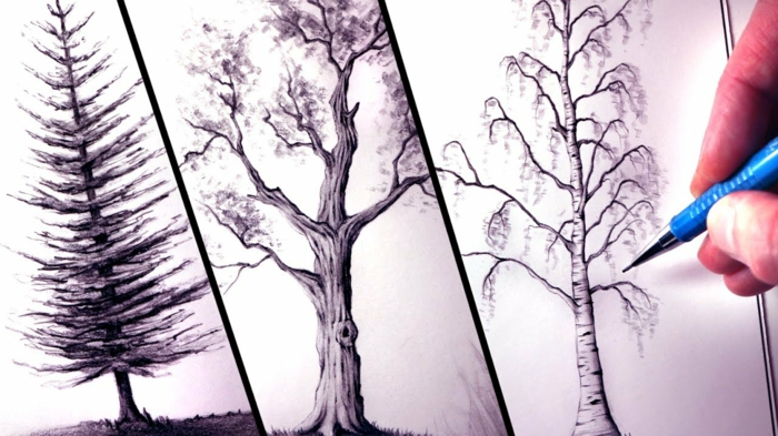 Idée dessin arbre simple dessin tronc arbre croquis arbre dessin noir et blanc