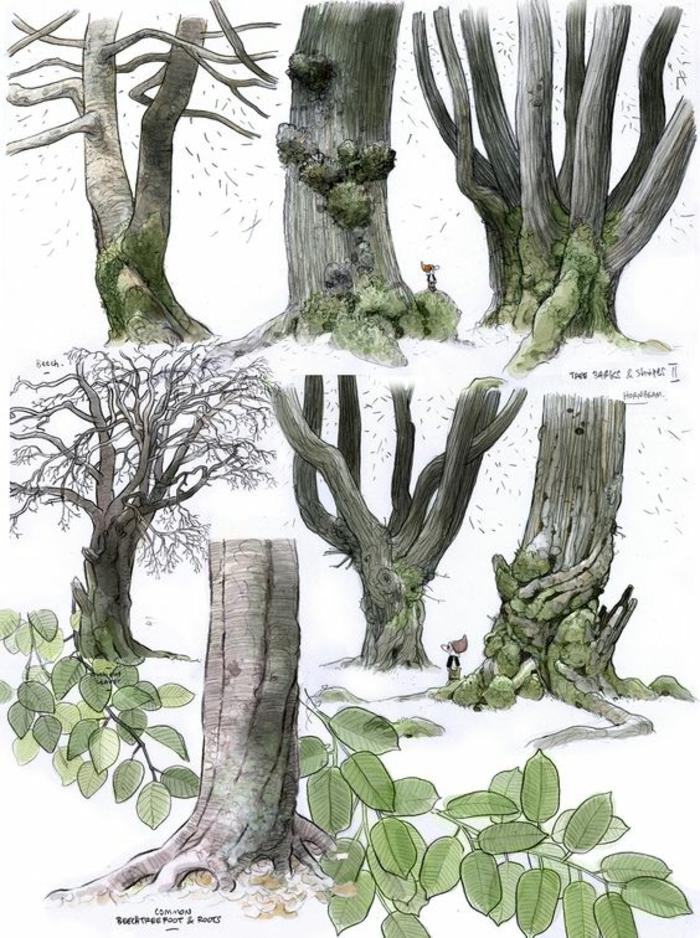 Model de dessin facile croquis au crayon dessin arbres tronc
