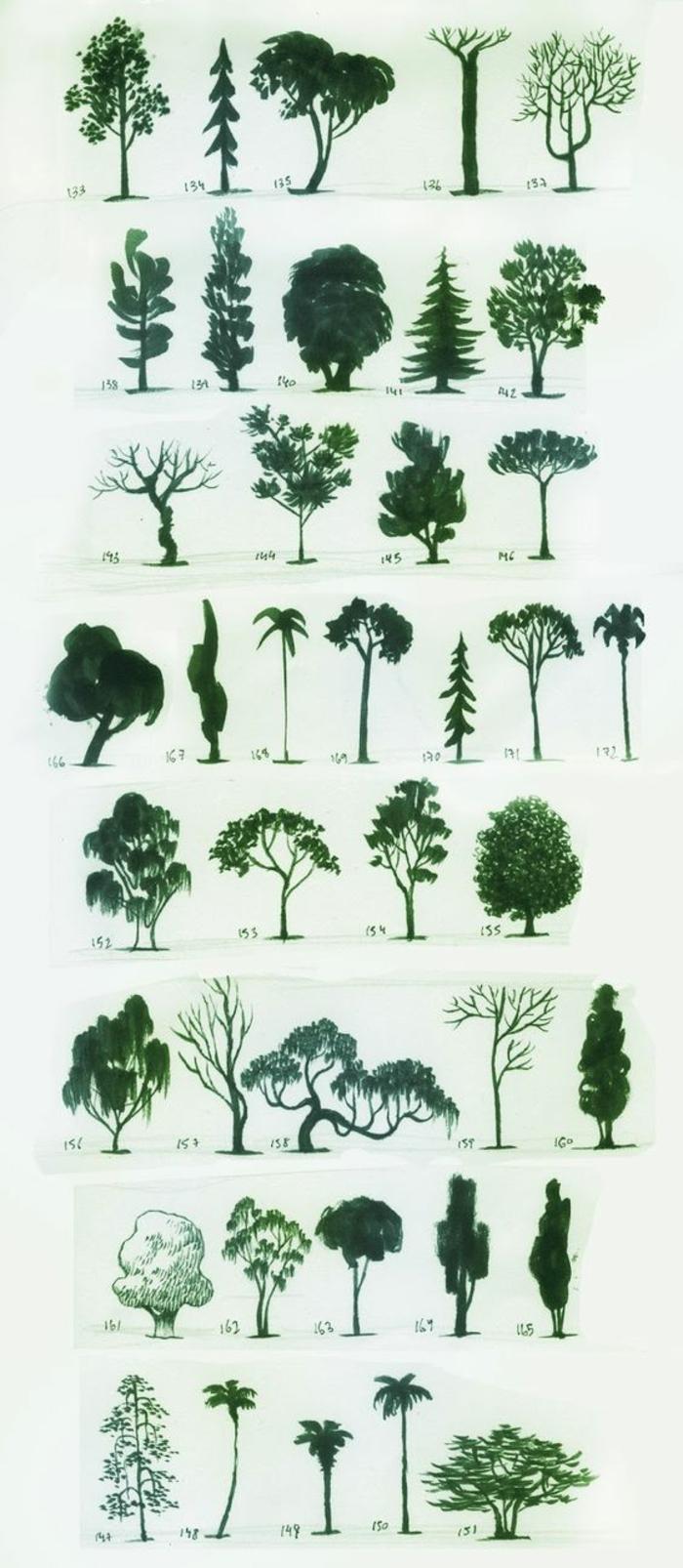 Dessiner différentes arbres espèces de foret monochrome dessin en vert