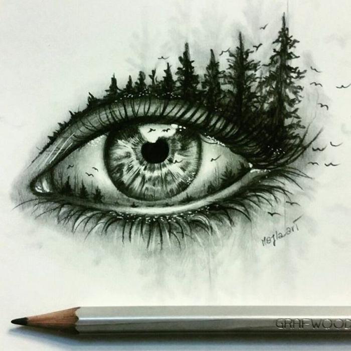 Photo apprendre a dessiner des arbres image dessin tronc d arbre