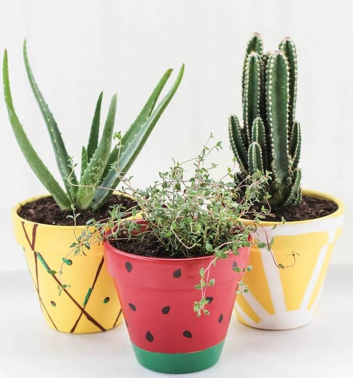 peindre pot terre cuite 28 images 8 diy 224 r 233 aliser avec un pot testeur de peinture. Black Bedroom Furniture Sets. Home Design Ideas
