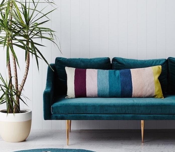 modele de canapé design en bleu canard et velours, coussins colorés, palmier dans un pot de fleur, fond blanc
