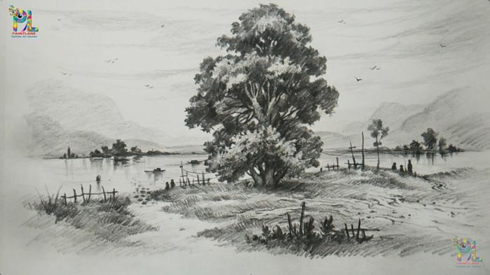 Dessin crayon paysage dessiner un pin dessins arbre paysage crayon noir et blanc