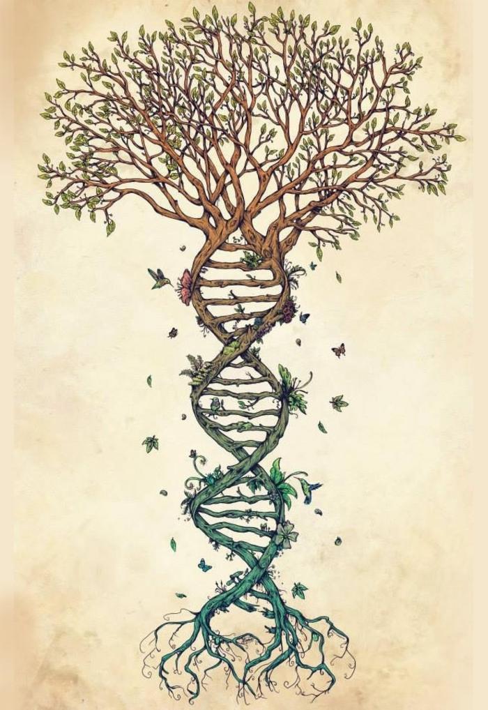 Modele arbre dessin crayon noir dessin sur la nature belle dna chaine cool idée arbre de vie