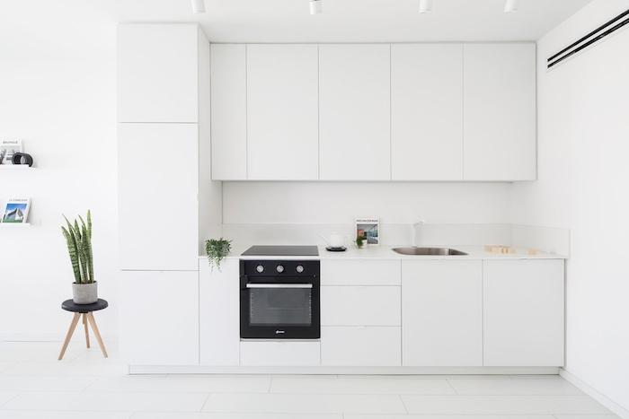 cuisine moderne blanche, style minimaliste épuré, four noir intégré et quelques plantes vertes
