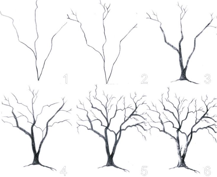 les étapes à suivre pour dessiner un arbre nu en hiver avec racines et tronc sans feuilles, dessin arbre avec branches, dessin arbre facile à faire