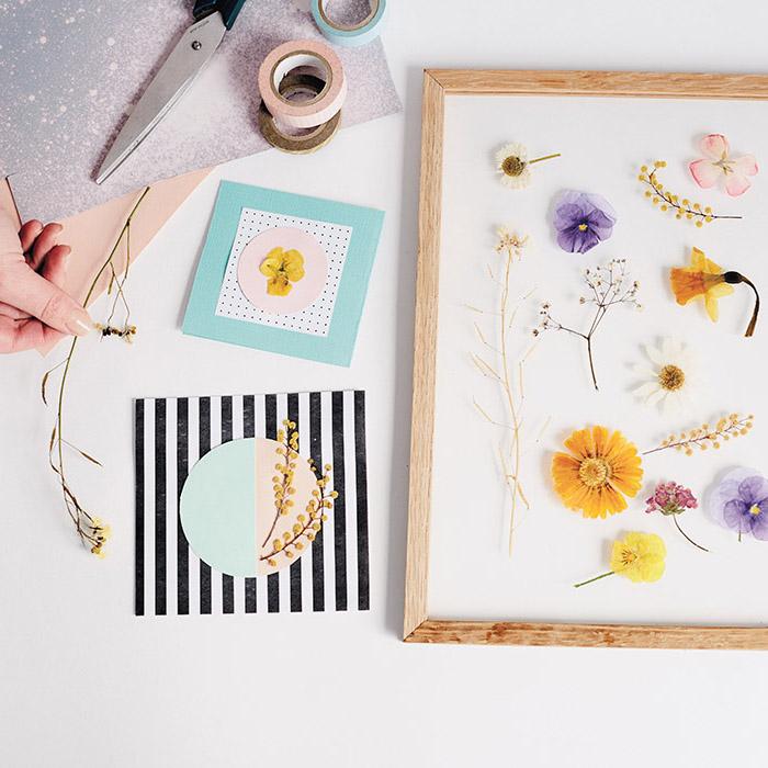 comment fair eun herbier, deco murale de fleurs séchées pressées entre deux carreaux de verre, cadeau fait main