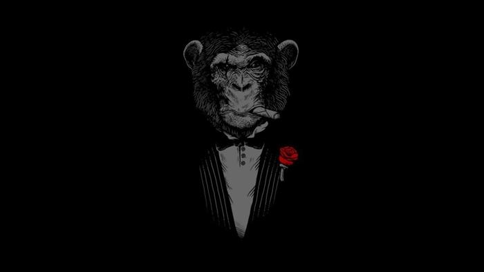 fond d'écran hd noir et blanc, photo amusante noire avec silhouette singe homme d'affaire