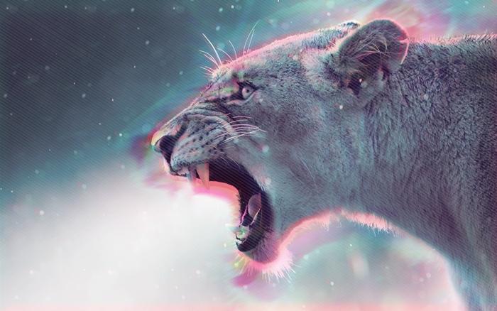image fond d'écran, photo digitale en couleurs grise avec silhouette lion féroce