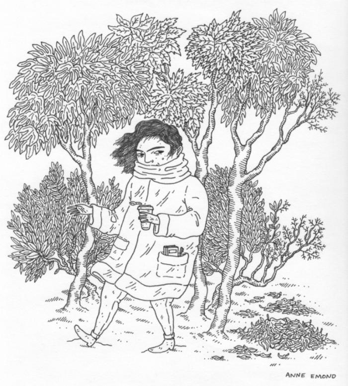 Nature dessin d arbre dessiner un arbre d automne image femme hiver cool dessin crayon noir